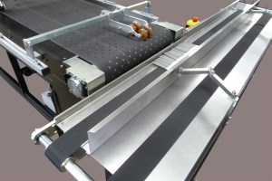 Shingle Conveyor | Image 2