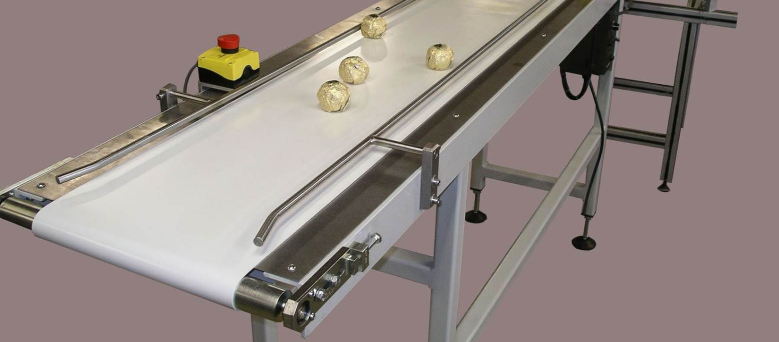 For over 30 years, Manufacturers of Erectors, Cartoners, Closers, Vacuum Conveyors and Suppliers of Gluers and Feeders